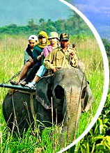 Tourism in Assam