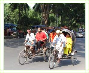 Assam Local Transport - Local Transport In Assam, Public Transport ...