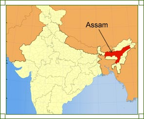 Location of Assam