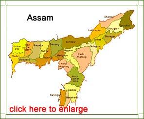 Map Of India Assam Assam Map   Assam State Map, Assam India Map