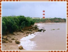 Gopnath Beach Gujarat