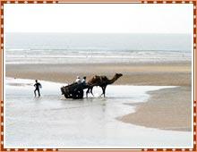 Kutch Mandvi Beach Gujarat