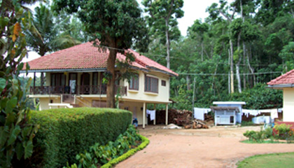 Paddy Valley Home Stay