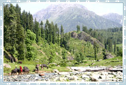 Daksum Travel  in Kashmir