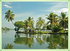 Trivandrum Backwaters