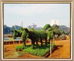 Mumbai Hanging Gardens , Hanging Gardens of Mumbai, Hanging