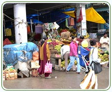 Shopping in Sikkim