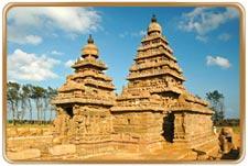 patta correction tamilnadu