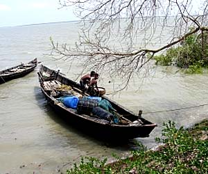 Things to do in Sunderbans