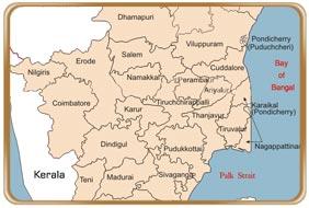 Tamilnadu Road Map Map of Tamilnadu   Tamil Nadu Map   Road Map of Tamilnadu